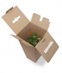 цветочная коробка